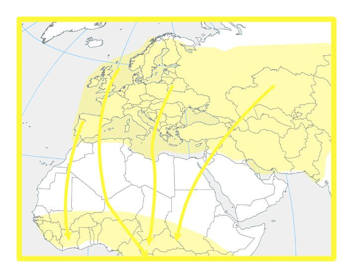 bezdeligas_migracijas_karte