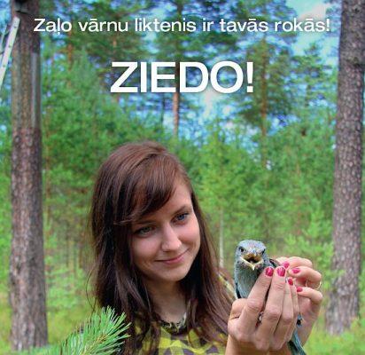 Zalas_varnas_hor2_550